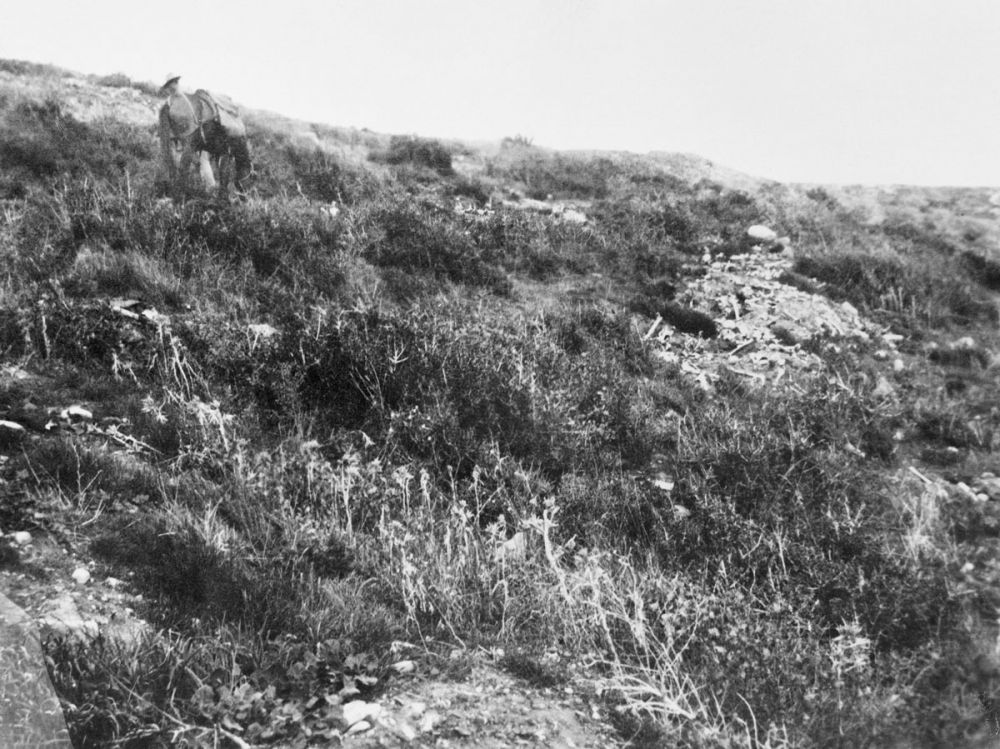 Piles of human bones on top of Chunuk Bair. One of a series of photographs taken on Gallipoli by the Australian War Records Section, 1919.