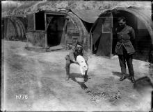 A soldiers playing with Snowy the cat, the New Zealand Tunnellers' mascot, in Dainville, France.